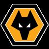 Wolverhamton Wanderers FC Badge